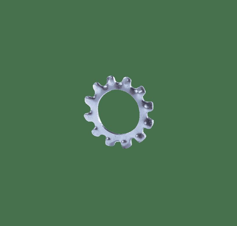 แหวนจักรนอก-BW